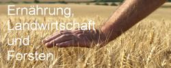 Arbeitskreis Ernährung, Landwirtschaft und Forsten